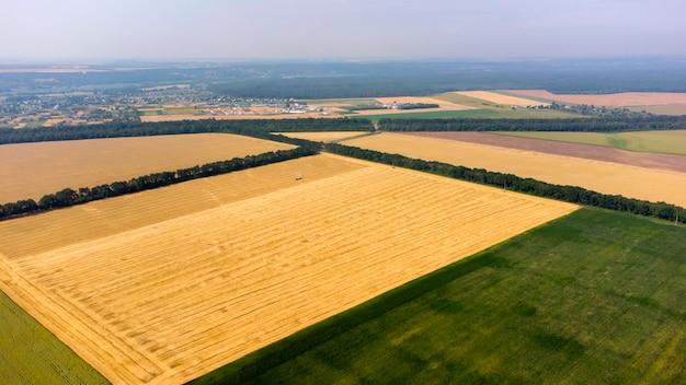 Vista aérea do campo de trigo após a colheita com uma colheitadeira colhendo palha