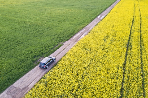 Vista aérea do carro dirigindo pela estrada de chão reto através de campos verdes