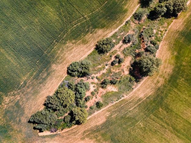Vista aérea do drone de campos cultivados e árvores em um terreno