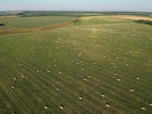 Vista aérea do feno empilhado no campo de trigo sob o céu. campo ambrosia. fotografia drone.