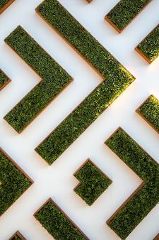 Vista aérea do jardim labirinto
