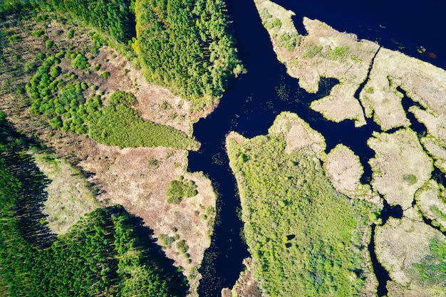 Vista aérea do plano de inundação do rio e da floresta verde em dia de verão. vista aérea da bela paisagem natural