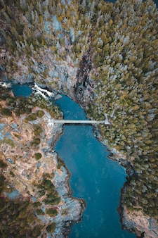 Vista aérea do rio entre as árvores