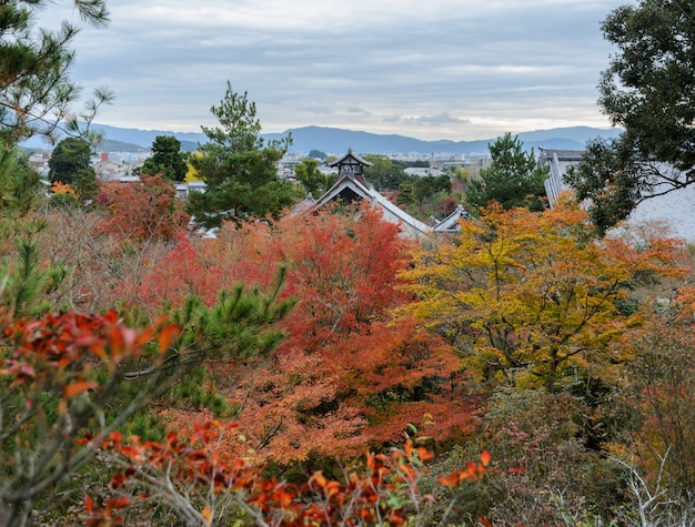 Vista aérea do templo tenryuji durante a temporada de outono em kyoto, japão
