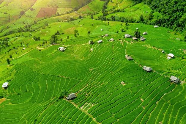 Vista aérea do terraço do arroz em ban pa bong piang em chiang mai, tailândia