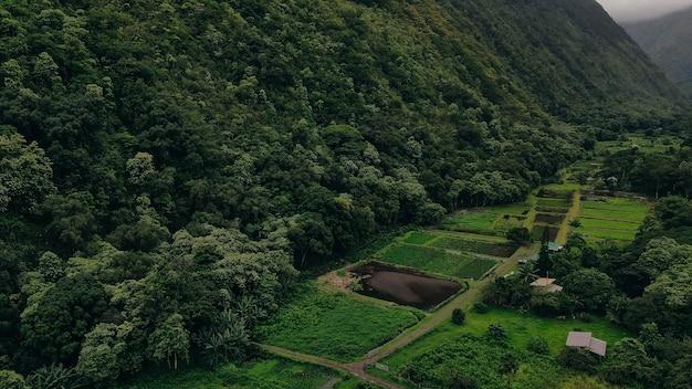 Vista aérea do vale waipio, na ilha grande do havaí, com suas belas cachoeiras envoltas em nevoeiro e nuvens.