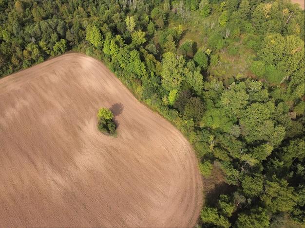 Vista aérea dos campos ao pôr do sol