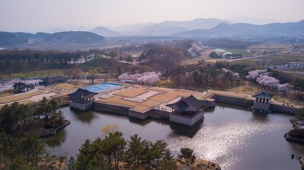 Vista aérea em cherry fastival na coréia do sul