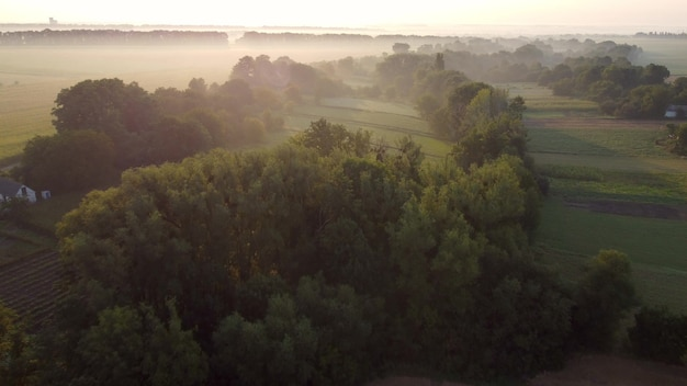 Vista aérea, nevoeiro matinal ao nascer do sol, voo sobre árvores e vales na zona rural.