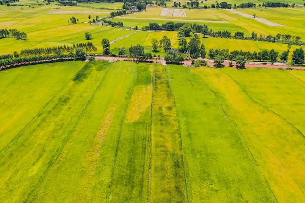 Vista aérea, paisagem, ambiente, área agrícola, em, campo