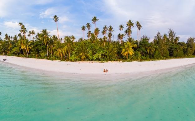 Vista aérea, praia tropical, ilha, recife, caraíbas, mar, indonésia, moluccas