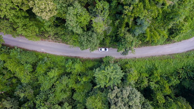 Vista aérea superior carro dirigindo pela floresta na estrada do país