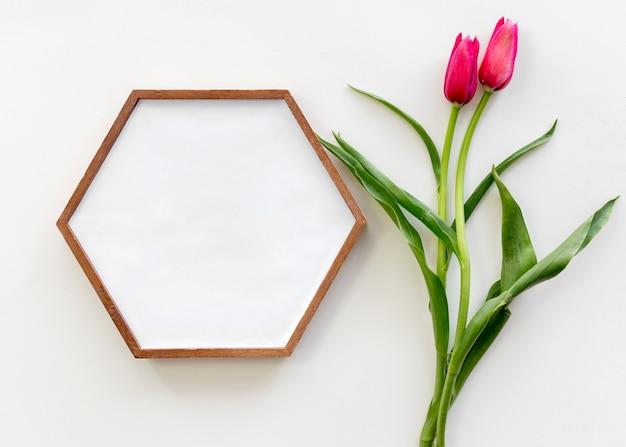 Vista alta ângulo, de, forma hexagonal, frame retrato, e, tulipa vermelha, flor, sobre, branca, superfície