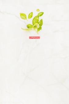 Vista alta ângulo, de, fresco, verde, manjericão, folhas, ligado, mármore