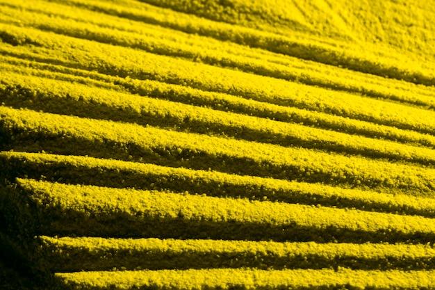 Vista alta das linhas paralelas amarelas da areia