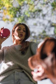 Vista baixa ângulo, de, femininas, pet, proprietário, segurando bola