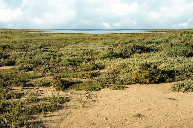 Vista bonita das regiões pantanosas naturais famosas de ria formosa situadas em faro, portugal.