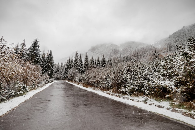 Vista cênico da estrada com neve e montanha e fundo gigante das árvores na estação do inverno. morske oko