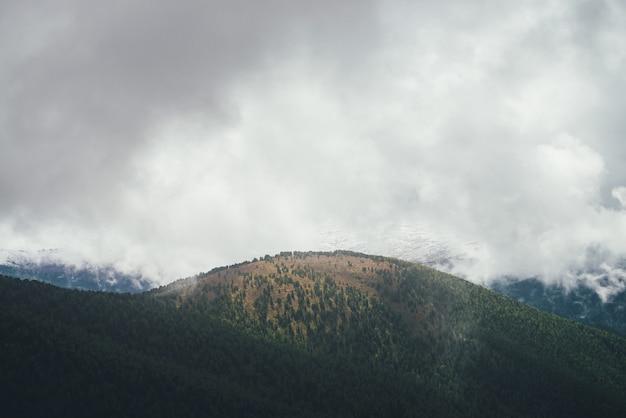 Vista colorida para grande floresta colina em cores de outono em fundo de altas montanhas nevadas em nuvens baixas cinzentas. paisagem cênica de outono com bela colina e grande parede de montanha de neve em nuvens de chuva.