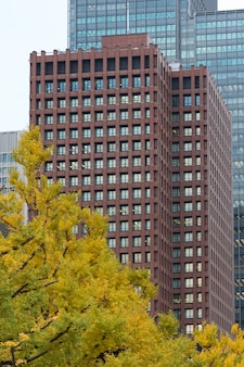Vista da árvore de outono com um edifício moderno no fundo, japão. conceito de natureza e construção moderna.