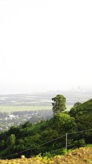 Vista da baía de batumi e da paisagem urbana na geórgia com horizonte em dia ensolarado