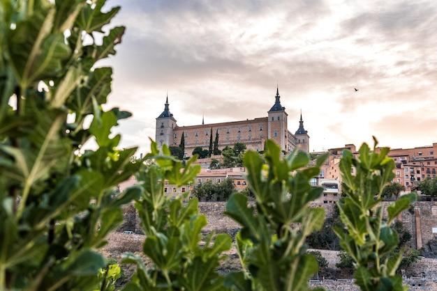 Vista da cidade de alcázar de toledo entre galhos de árvores