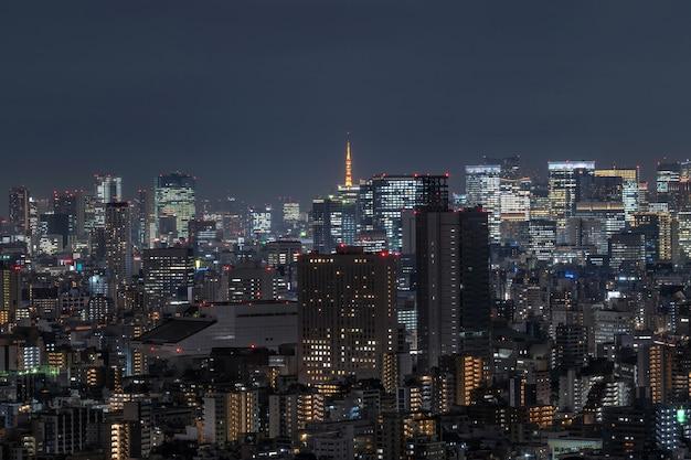 Vista da cidade de tóquio, que pode ver a torre de tóquio, longe, tomando do céu de tokyo árvore leste, japão