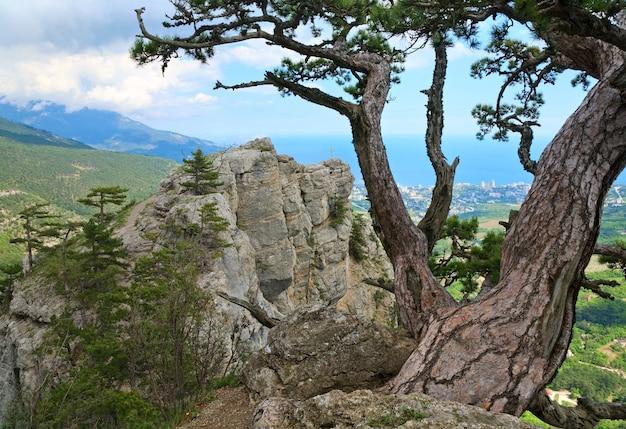 Vista da cidade de yalta da encosta do monte aj-petri