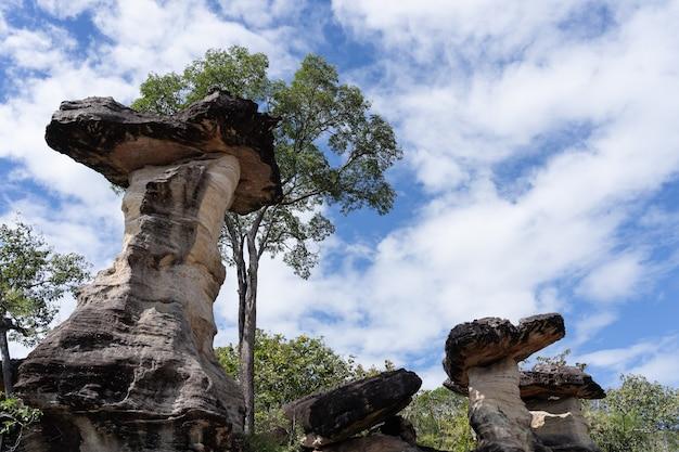 Vista da coluna da terra no parque nacional do tam de pha.