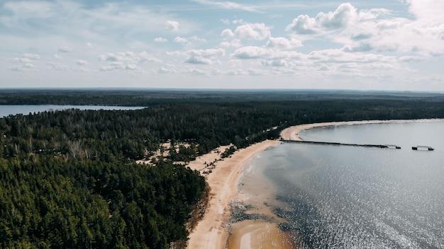 Vista da costa do oceano de quadcopter, areia e pedras na costa do mar. vista superior do oceano costa. pinetree floresta vista superior do quadcopter. dia do oceano.