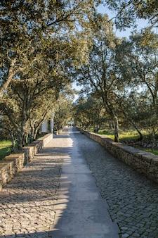 Vista da estrada rural do cobblestone perto de fatima, portugal.