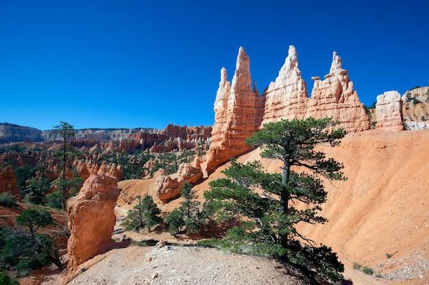 Vista da famosa trilha navajo em bryce canyon, utah, eua