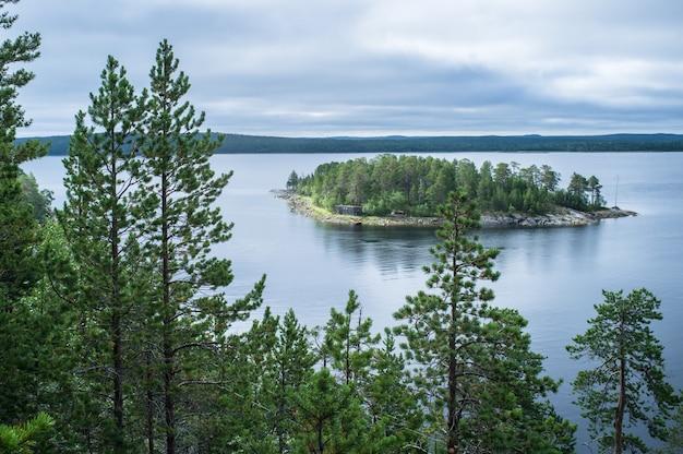 Vista da ilha do penhasco através dos pinheiros