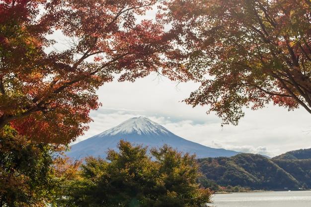 Vista da montanha de fuji na estação do outono, japão.