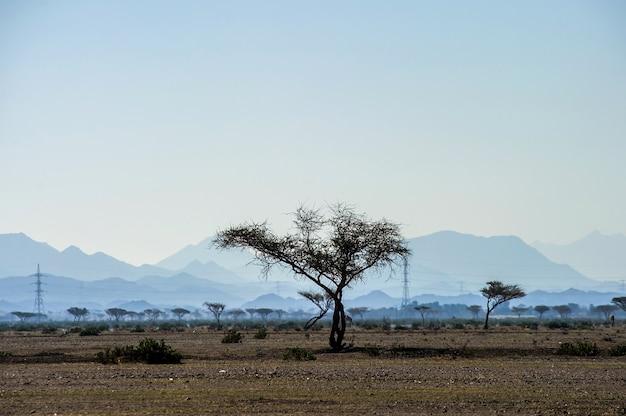 Vista da montanha em fujairah