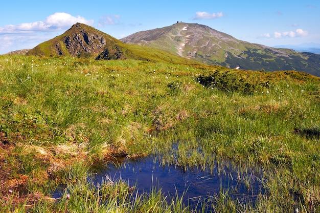 Vista da montanha no verão com pequena poça