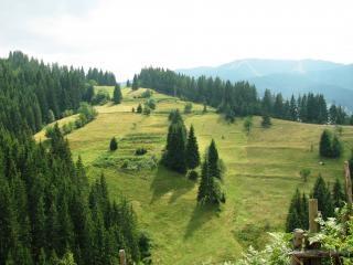 Vista da montanha rhodopi central, a paisagem