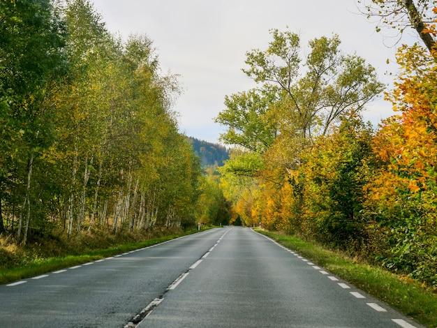 Vista da paisagem de outono da estrada do assento do motorista, baixa silésia, polônia