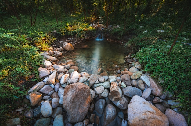 Vista da paisagem natural do riacho de água doce com o fundo da montanha e da floresta