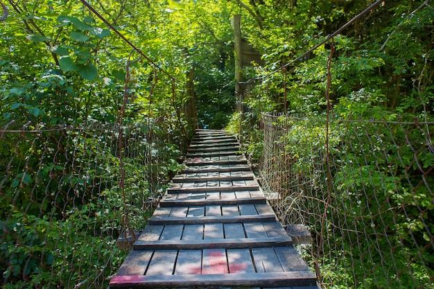 Vista da ponte de madeira suspensa entre árvores verdes