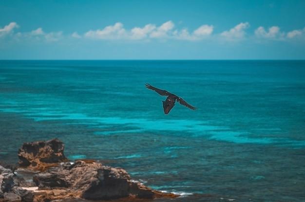 Vista da praia de cancún