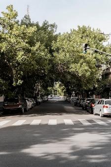 Vista da rua da cidade com árvores e cartão