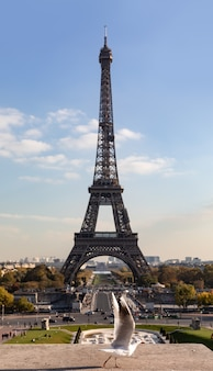 Vista da torre eiffel do trocadero