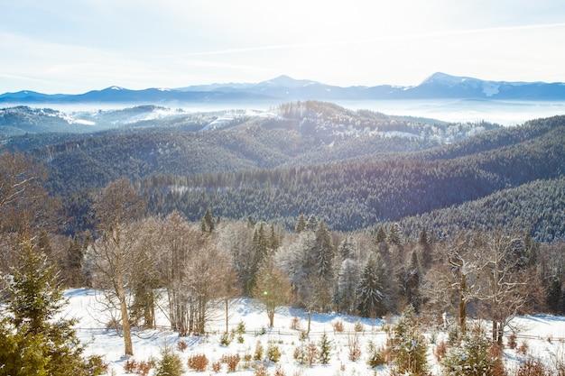 Vista das belas montanhas nevadas, florestas