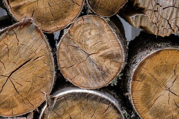 Vista das extremidades das toras de bétula serradas umas sobre as outras estrutura e rachaduras de madeira seca