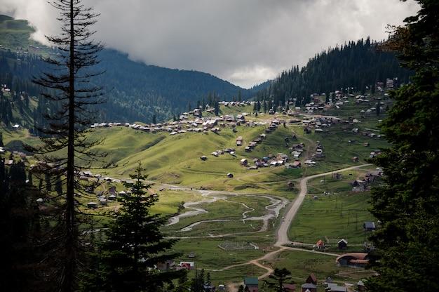 Vista das montanhas cobertas por florestas e casas nas colinas em primeiro plano de árvores sempre-verdes