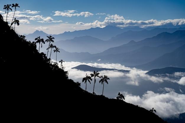 Vista das montanhas com o primeiro plano do cloudscape e da palmeira. conceito de viagens e aventura. foto de alta qualidade