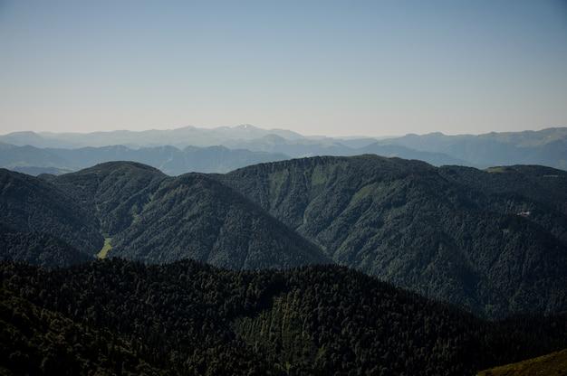 Vista das montanhas sob o céu claro no dia coberto de florestas sempre-verdes