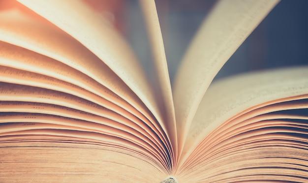 Vista das páginas do livro