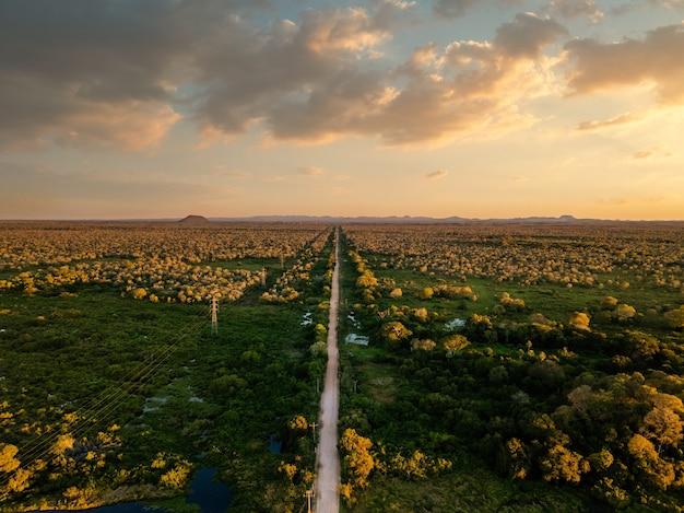 Vista de alto ângulo de uma bela paisagem verde com um caminho sob um céu nublado